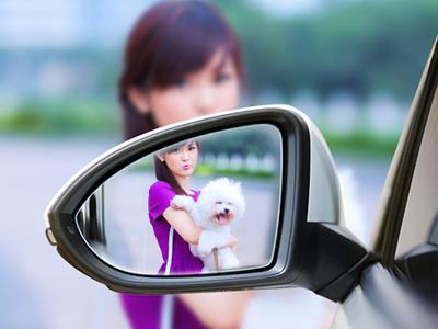 Gương xe