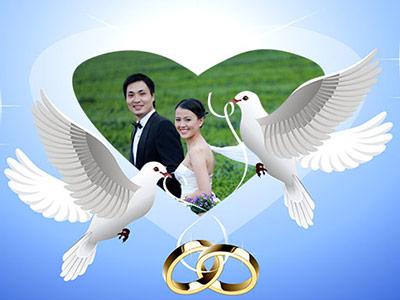 Khung ảnh cưới chim bồ câu