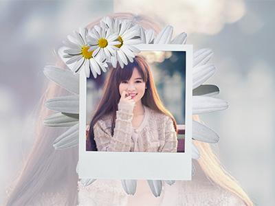 Khung ảnh hoa cúc trắng