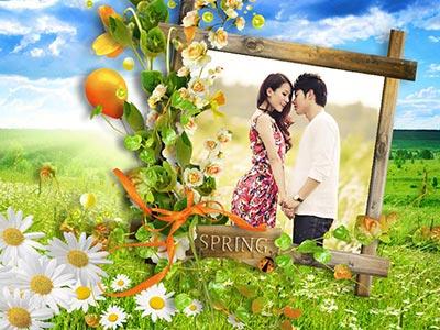 Khung ảnh mùa xuân đẹp